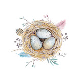 Fototapety  Hand drawn watercolor art bird nest with eggs , easter design.