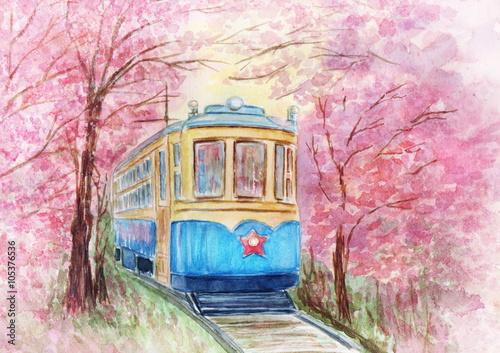 Old tram in spring - 105376536