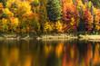 Vermont foliage during peak season