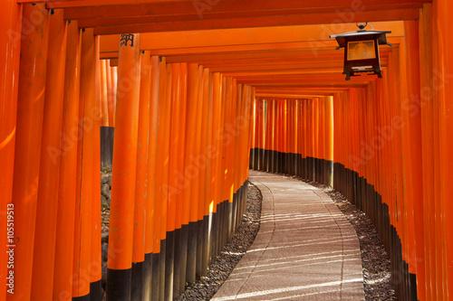 Foto op Canvas Baksteen Torii gates of the Fushimi Inari Shrine in Kyoto, Japan