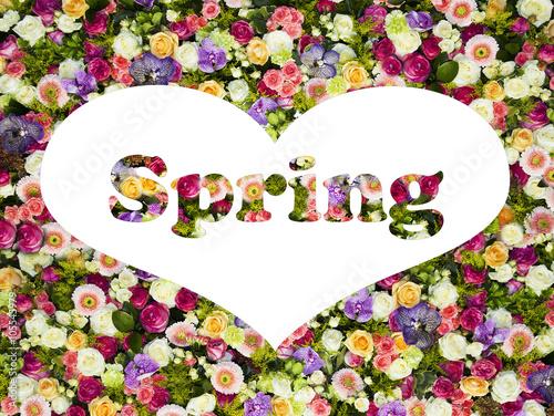 Zdjęcia na płótnie, fototapety, obrazy : amor en primavera