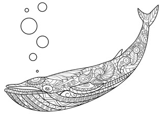 Whale coloring book for adults vector