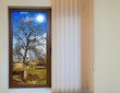 view from the window with blinds - 105554399
