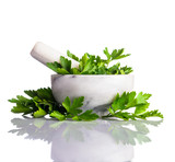 Green Parsley in Pestle and Mortar Isolated on White - 105593951