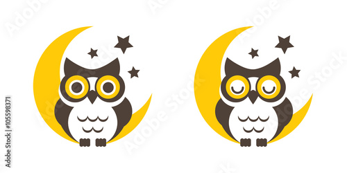 Owl cartoon on the moon vector
