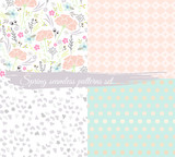 Seamless spring floral patterns set. Background with flowers, le - 105605127