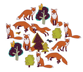 Fox forest color isolate objects white round.