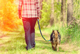 Woman with dog on the leash walking in the forest back to camera