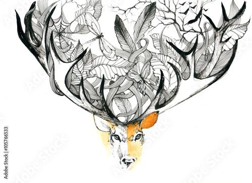 deer - 105766533