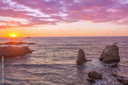 Fotobehang Candy roze California Coastal Sunset