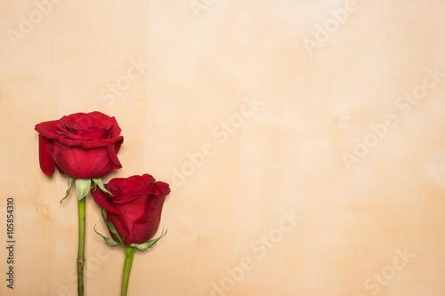 二本のバラ