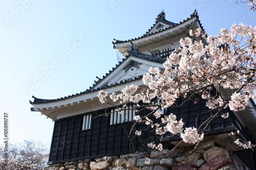 Poster 桜と日本の城 浜松城 Cherry blossom and Japanese castle in Hamamatsu