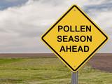 Caution - Pollen Season