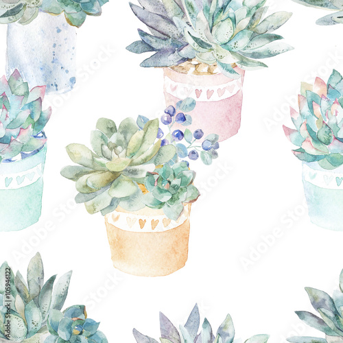 Floral seamless pattern.Succulents in pots. - 105946122