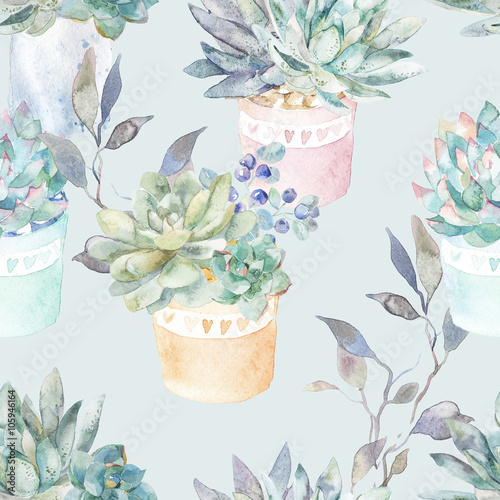 Floral seamless pattern.Succulents in pots. - 105946164