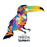 Tropical Summer Toucan. Abstract Toucan bird with various tropical elements. - 105984319