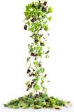 cascata di insalata mista
