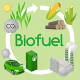 Biofuel life cycle, Biomass ethanol from corn, sugarcane, wood, diagram illustration