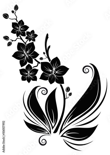 black orchids schwarze orchideen