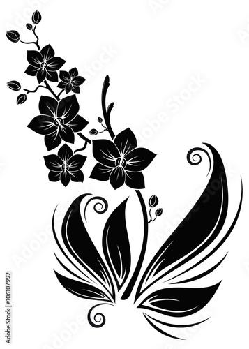 gamesageddon black orchids schwarze orchideen. Black Bedroom Furniture Sets. Home Design Ideas