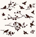 Wiosenne ptaki i gałązki.