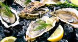 Frische Austern  - 106137796