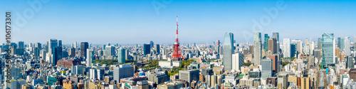 Tokyo skyline Panorama mit Tokyo tower und Roppongi