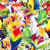 Fototapety watercolor parrots with tropical flowers seamless pattern