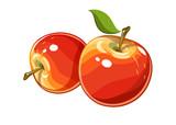 Ripe juicy apple - 106225575