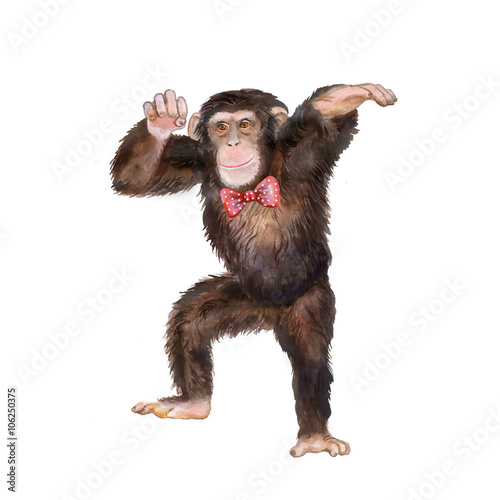 Watercolor portrait of monkey with bow tie on. Dancing animal - 106250375