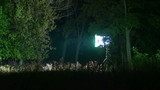2 in 1!The bright spotlight during the night shot in the forest. Real time capture