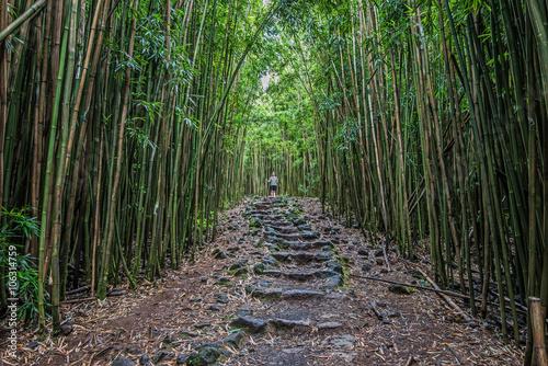 Pipiwai Trail Stone Path in Haleakala National Park