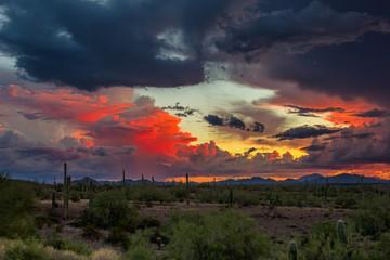 Desert sunset © mdesigner125