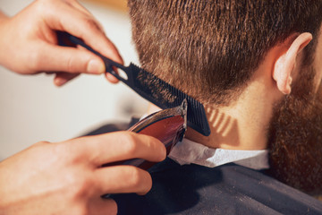 Professional barber cutting hair of his client