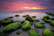 Green morning.