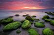 Green morning. Rocky beach seascape at sunrise.