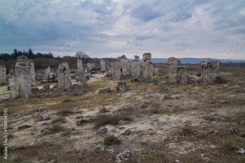 Papiers peints Cappuccino The Stone Forrest, Pobiti Kamani in Bulgaria