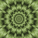 Green Daisy / A abstract fractal image with a monochrome flower design in green. - 106495553