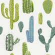 Cotton fabric Vector Cactus Background. Seamless Pattern. Exotic Plant. Tropic
