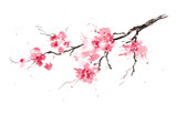 Fototapety Sakura branch. Original watercolor painting.