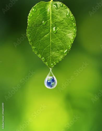 ziemia-w-kropli-wody-pod-zielonym-lisciem-elementy-tego