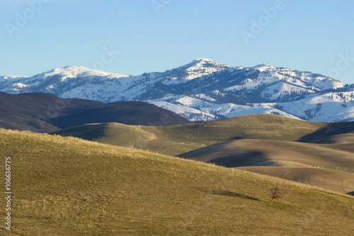 open rolling hills stand before a snow capped mountain