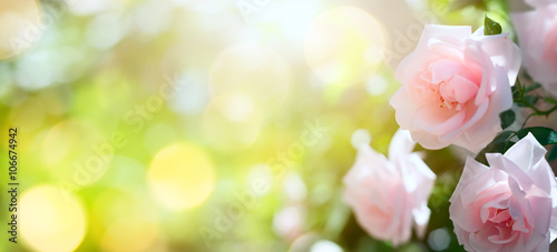 Staande foto Zwavel geel art Abstract spring or summer floral background