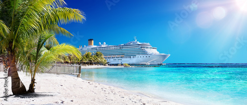 Cruise To Caribbean With Palm tree On Coral Beach
