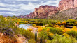 Salt River and Surrounding Mountains in the Arizona Desert in the United States