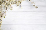 Fototapety spring background. fruit flowers on wooden table