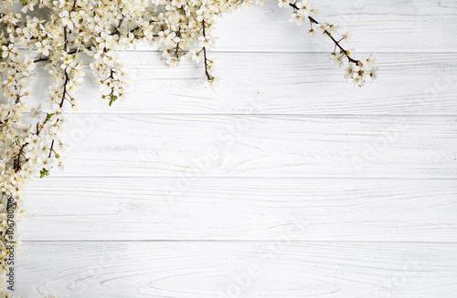 Fototapeta spring background. fruit flowers on wooden table