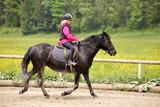 Reitübung mit Pony - 106811143