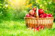 Fototapeta Bios - Organiczny -