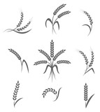Wheat ears or rice icons set. Agricultural symbols isolated on white background.  - 106873313
